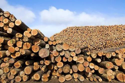 江苏木材价格持续下跌 木材价格始终处于低位浮动